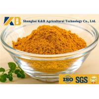 Best Natural Dried Fish Powder 60% Protein Content With Healthy Raw Material wholesale