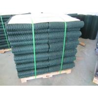 China 6005 Vinyl Coated Green Wire Netting / 25mm Galvanized Poultry Netting on sale