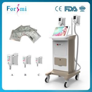 China Cryolipolysis vacuum machine love handles removal freeze liposuction machine for sale on sale