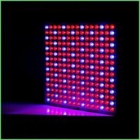 Best IP54 Indoor LED Grow Lights / ABS Full Spectrum Plant Grow Lights 32 W For Greenhouse wholesale
