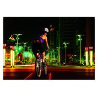 Best 8LEDs Rechargeable Bicycle Safety Rear Laser Lights wholesale