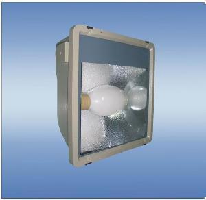 Best 120W Electrodeless Light Energy-Saving Induction Flood Light (WY2520) wholesale
