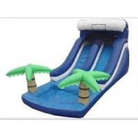 China Funny Commercial Giant Outdoor Inflatable Water Slides Game for Adult, Kids on sale