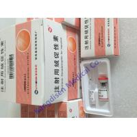 Best HCG 9002-61-3 Injection Anabolic Steroids Chorionic Gonadotropin Beta Polypeptide wholesale