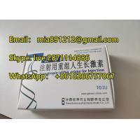 China Recombinant HGH Human Growth Hormone Injections Bodybuilding 10 IU High Purity  HCG  hgh best price on sale