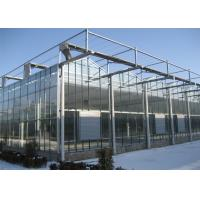 China Venlo Multi Span Polycarbonate Sheet Greenhouse Low Material Consumption on sale