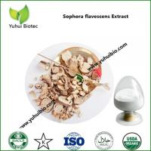 Best oxymatrine india,oxymatrine insecticide,oxymatrine pesticide,oxymatrine supplement,sophora oxymatrine wholesale