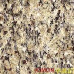 Best Giallo Cecilia Granite (XMJ-G16) wholesale