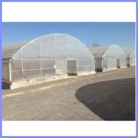 China galvanized pipe greenhouse, vegetable greenhouse on sale