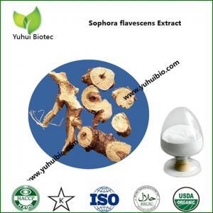 Best matrine 98%,matrine,Sophora flavescens,sophora root extract,sophora flavescens supplement wholesale