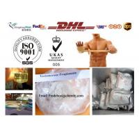 Best Raw steroid powders Testosterone Propionate 57-85-2 For Muscle Building wholesale