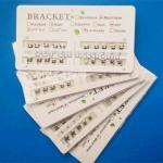 Best Orthodontic Metal Bracket 80 Mesh Base Edgewise ROTH MBT 0.018 0.022 wholesale
