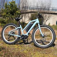 China 1:1 PAS Electric Fat Tire Mountain Bike Light Blue Color 48V 15A Controller on sale