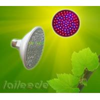 China 4W Hydroponic, Seeding CRI 220V 50Hz Led Grow Light Panels with Lumen 420Lm on sale