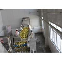 China Aseptic Bag Package Concentrate Orange Fruit Juice Processing Line on sale