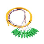 Best 12 Core SC APC single mode distribution  Fiber Optic Pigtail For Telecommunication Networks wholesale