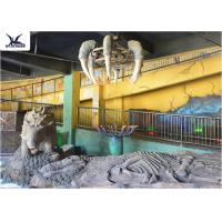 Best Indoor Museum Life Size Dinosaur Replicas , Sunproof Dinosaur Skeleton Replica wholesale