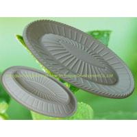 Best Biodegradable Tray (30#) wholesale