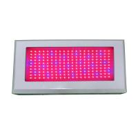 Best 8 : 1 / 7: 1 Color Ratio 200W  LED Grow Light Panel With CE And RoHS Certificates	 wholesale