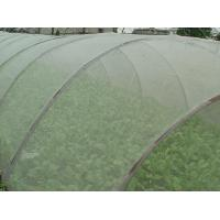 Best Green House Using Anti-insect screen 40x25 mesh,PE Plant Anti Insect Net,Mosqutio Screen wholesale