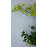 China Smooth Surface Stainless Steel 316 Wire Rope Mesh For Plant climbing on sale