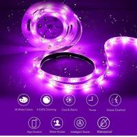 China Bedroom Or Living Room Color Changing LED Strip Tunable White Mood Light on sale