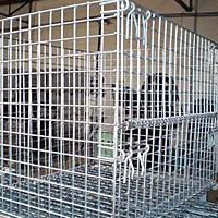 Best Wire Mesh Containers wholesale