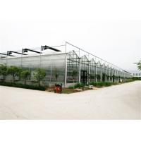Best 4mm / 5mm Glass Covering Glass Greenhouse Kit , Forest Garden Greenhouse For Seed Breeding wholesale