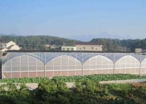 Best Fruits Flower 8m Single Span PE Plastic Film Greenhouse wholesale