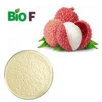 China Organic Freeze Dried Fruit Powder Lychee Powder With Vitamins Solvent Extraction on sale
