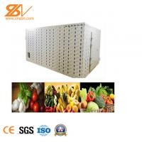 China Strong Industrial Hot Air Dryer Fruit Drying Equipment Easy Installation on sale