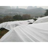 Best Hydrobilic Agriculture Non Woven Fabric PP Winter Protection No Pollution For Orchards wholesale