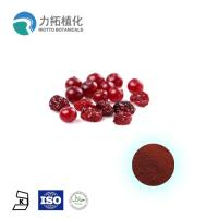 Best Pure Anthocyanidins Cranberry Extract / Fruit Extract 5% - 25% Resisting Cancer wholesale