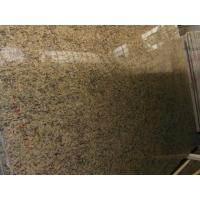 Best Granite Santa Cecilia wholesale