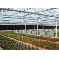Best UV Treated Multi Span Woven 200 Micron Reinforced Greenhouse wholesale