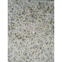 Best Natural G682 Galaxy White Granite Countertops Unique Design Eco - Friendly wholesale