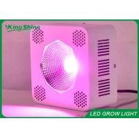 Single Chip 64 x 3W Cob Led Seedling Grow Light Green / Blue