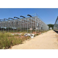 Best Integrated Tunnel Polycarbonate Agricultural Greenhouse wholesale