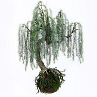 Best Q117-9 Realistic Artificial Plants Home Decor Plants Weeping Willow With Plastic Base wholesale