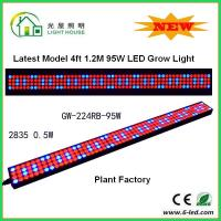 Best 1200mm Hydroponic Led Grow Light 1200mm For Greenhouse , Energy Saving wholesale