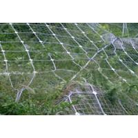 Best Slope Protection Mesh wholesale