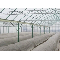 Best Irrigated Clear Cooling Poly Plastic Film Greenhouse wholesale