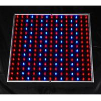 Cheap 450lm 14W indoor led grow lights panel systems AC90 - 240V for greenhouse lighting for sale