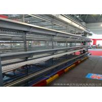 China Professional Poultry Egg Production Equipment For Layer Chicken Farm on sale