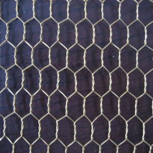 China galvanized hex net on sale