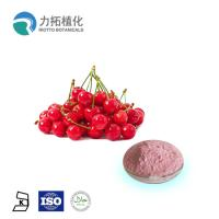 Best Pure Natural Cherry Fruit And Vegetable Juice Powder Food / Pharmaceutical Grade wholesale