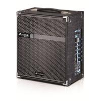 Wireless Microphone Portable PA Speaker System / Active Outdoor Speakers
