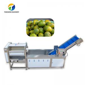 Dust Scrub Sortment Fruit Production Line Bubble Controlling Pineapple Vegetable Cleaning