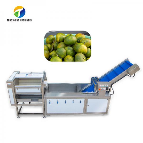 Cheap Dust Scrub Sortment Fruit Production Line Bubble Controlling Pineapple Vegetable Cleaning for sale