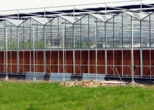 Best Steel Vegetables Hydroponic Multi Span Glass Greenhouse wholesale